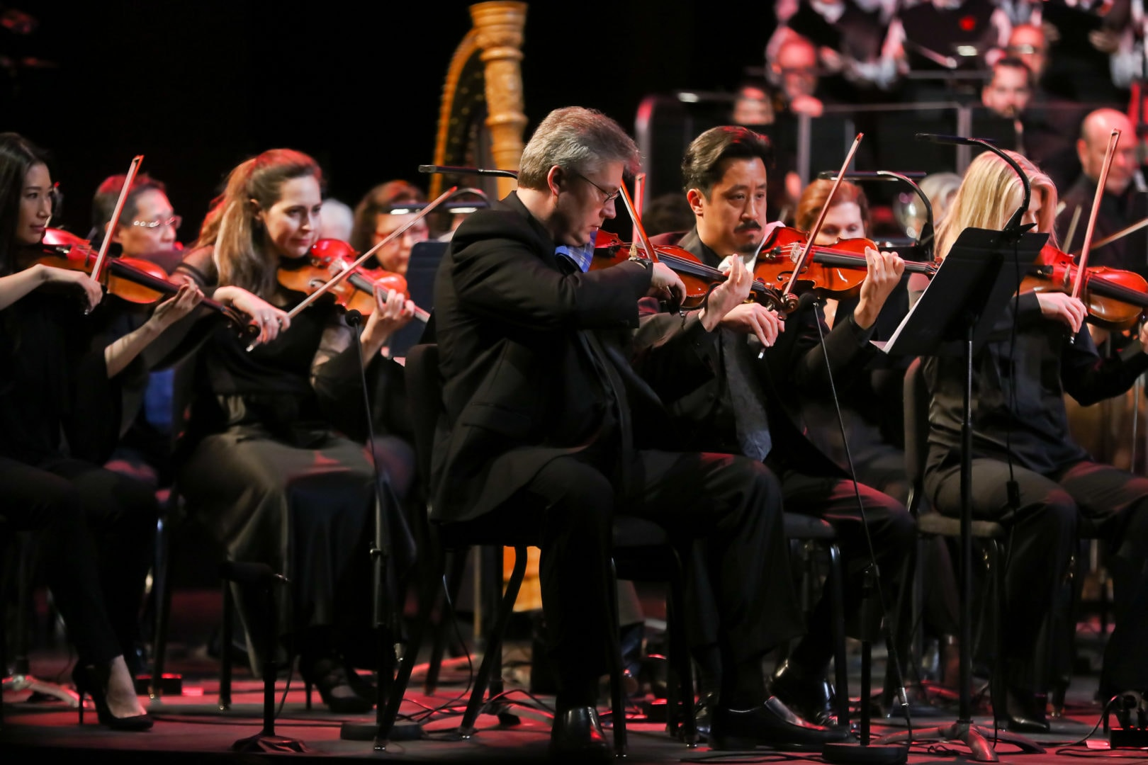 <h3>The strings section of the Free Spirit Symphony Orchestra.</h3>