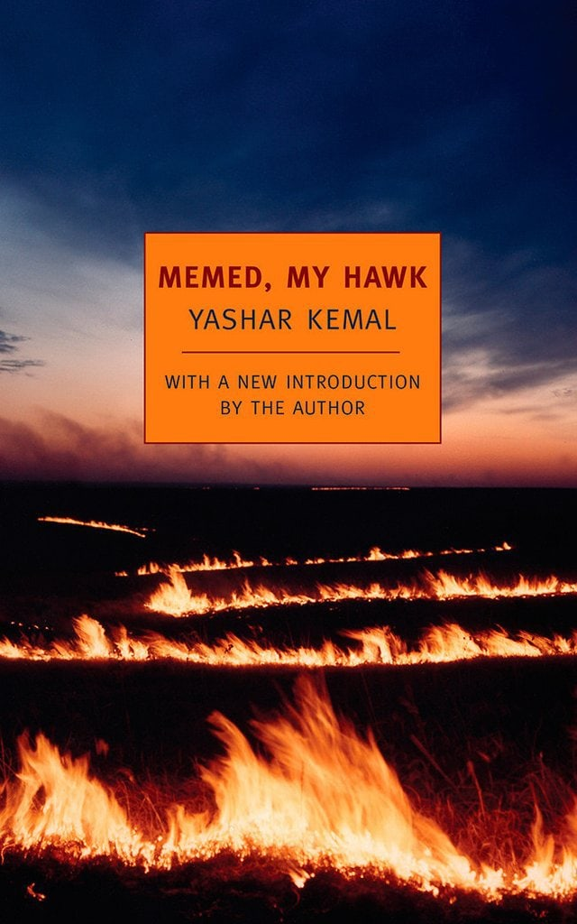 Memed, My Hawk